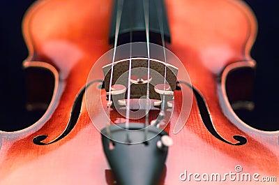 закройте вверх по скрипке