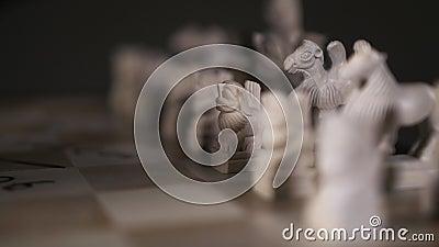 Закрывающийся игрок шахматист мужской руки делает первую стратегическую шаговую пешку в форме льва 4К видеоматериал