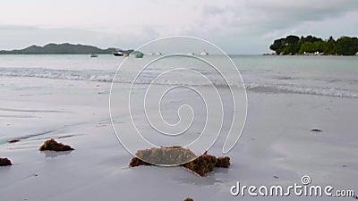 Закрытие видеоматериалов о потрясающем утреннем рассвете на мирном морском пляже Сейшельских Островов Тропиковая дорожка отпусков сток-видео