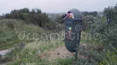 Застрелен мусорным баком в национальном парке, туристы растрачивают мусорный контейнер сток-видео