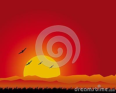 заход солнца ландшафта
