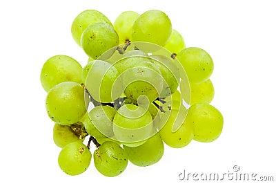зеленый цвет виноградин