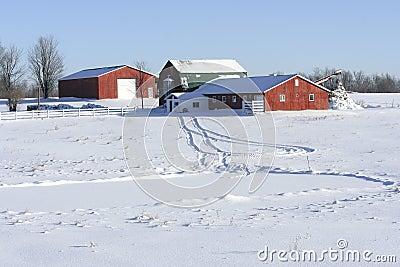 зима фермы