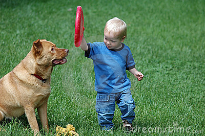 игра fetch