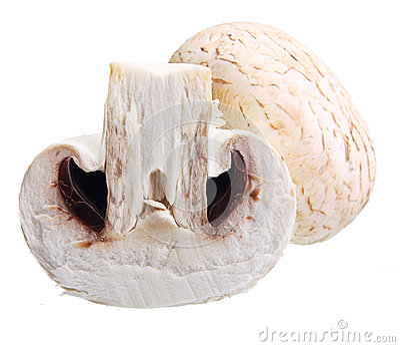 Изолированные грибы Champignon