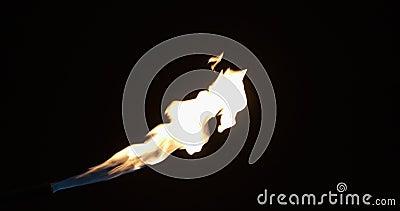 Интенсивный газовый реактивный пламя газового горелки Плавное увеличение и уменьшение одного потока пламени акции видеоматериалы