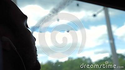 Кавказский мужчина спит в поезде Вид в окно видеоматериал