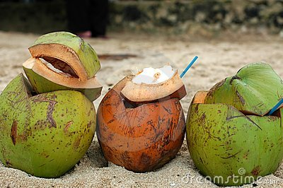 кокосы 3