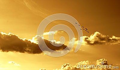 команда синхронизированная полетом VI