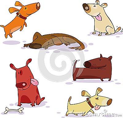 комплект doggy