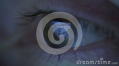Конец-вверх женщины наблюдает смотрящ монитор, работая с компьютером, компьтер-книжка Свет монитора отражен в коричневых глазах видеоматериал