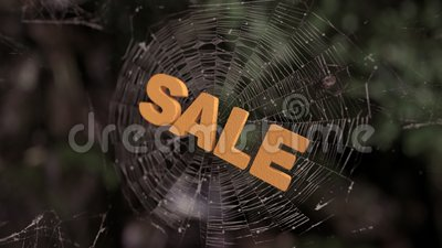 Конспект продажи сети паука сток-видео