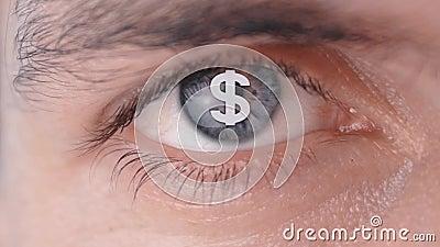 Концепция желание сделать деньги Логотип доллара на зрачке человеческого глаза акции видеоматериалы
