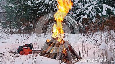 костры Разожженный огонь в цепной пиле леса a зимы лежа на том основании акции видеоматериалы