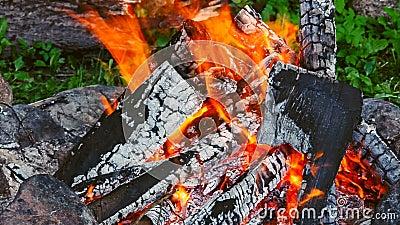 костры Тлея журналы embers 2 журнала падают из огня сток-видео