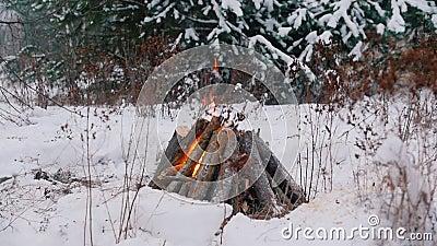 костры Человек разжигая огонь в лесе зимы видеоматериал