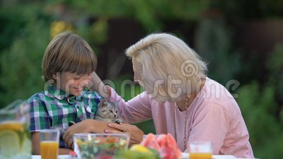 Котенок бабушки показа внука прекрасный, обнимая милого любимца, новый член семьи сток-видео