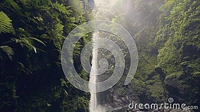 Красивый водопад горы в зеленом тропическом лесе пропуская от высокой скалы Вода потока от тропический пропускать водопада акции видеоматериалы