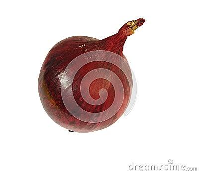 Красный лук