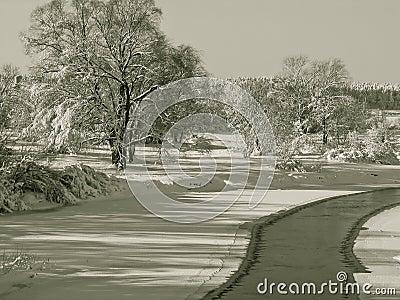 Ландшафты зимы