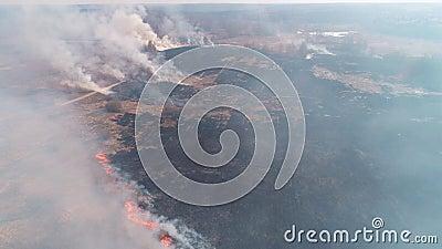 Лесные и полевые пожары Сухая трава, стихийное бедствие Вид с воздуха Большой полевой огонь с множеством горящих мест сток-видео