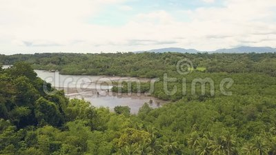Лес и озеро ладони воздушной съемки тропические на ландшафте горы на горизонте Шлюпки и корабли взгляда трутня в пропускать реки видеоматериал
