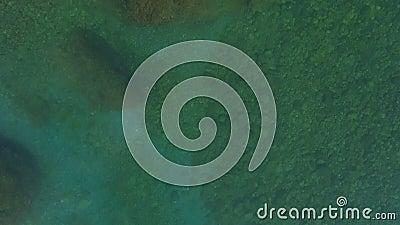 Летать над прозрачной поверхностью воды акции видеоматериалы