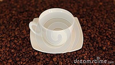 Лить чашку свежего горячего кофе видеоматериал