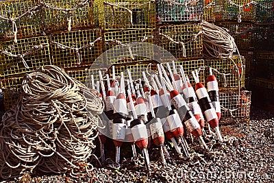 ловушки омара томбуев