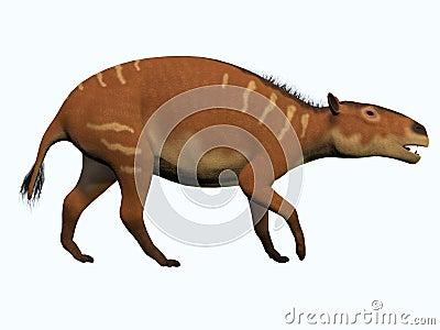 Лошадь Eurohippus на белизне