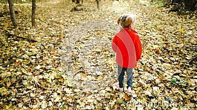 Маленькая девочка в осеннем парке сток-видео