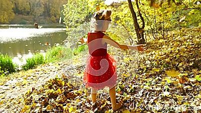 Маленькая девочка в осеннем парке видеоматериал