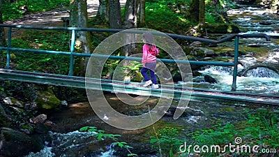 Маленькая девочка пересекая опасный мост над рекой горы - теките пропускать через толстый зеленый лес, Bistriski видеоматериал