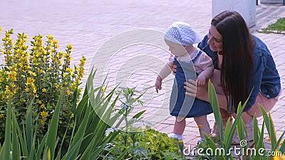 Мама, идущая с дочерью в парке, держит ее и смотрит на цветы сток-видео