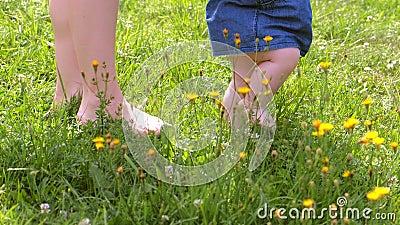 Мама учится ходить с маленькой девочкой, первые шаги в парке босоногие ноги закрылись видеоматериал