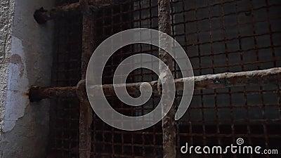 Металлическая гриль на окне, венеция, италия видеоматериал