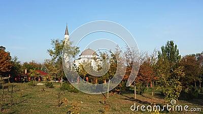 Мечеть среди деревьев осени в городе Mariupol видеоматериал