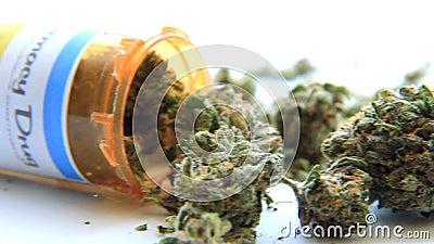 Медицинская марихуана 7 видеоматериал