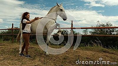 Молодая женщина и лошадь на подъезде, лошадь поднимает ноги высоко Процесс подготовки видеоматериал