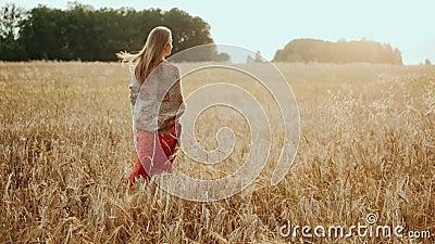 Молодая фермерская девочка, идущая по пшеничному полю на закате Современное сельское хозяйство, счастливая молодежь и концепция п сток-видео