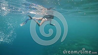 Молодой турист, сноркелингующий в океане, стреляя в рыбы и кораллы по телефону видеоматериал