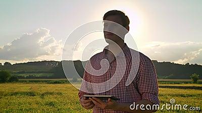 Молодой уверенно agronomist держа таблетку и смотря пшеничное поле вокруг, красивая природа с заходом солнца в предпосылке видеоматериал