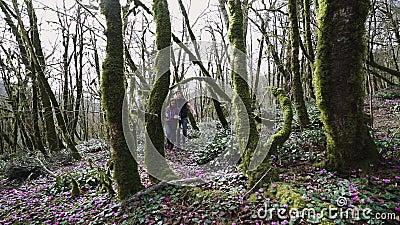 2 молодые люди идут глубоко в лес на солнечный день акции видеоматериалы