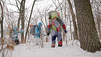 Молодые hikers спортсменов идут в зимний день в лесе, шагая над сугробами, спорт orienteering сток-видео