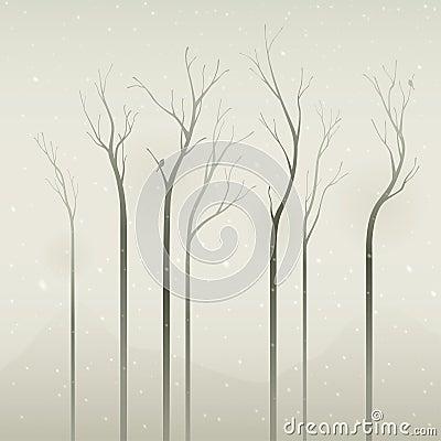 молчком зима