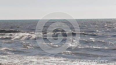 Море одичалые и пакостные 4 видеоматериал