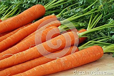 моркови свежие