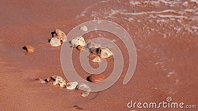 Морские волны на камнях №2 акции видеоматериалы