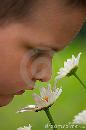 насладитесь цветками примите время к