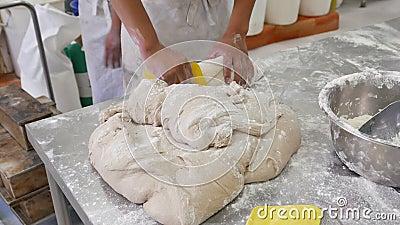 Насыпь вырезывания хлебопека теста хлеба видеоматериал